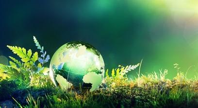 Ambiente natura mondo inquinamento