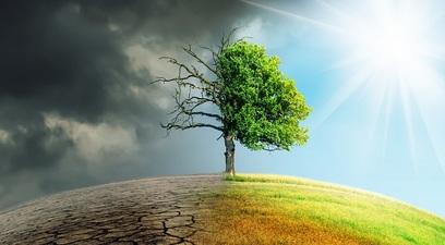 Clima aridit%c3%a0 siccit%c3%a0