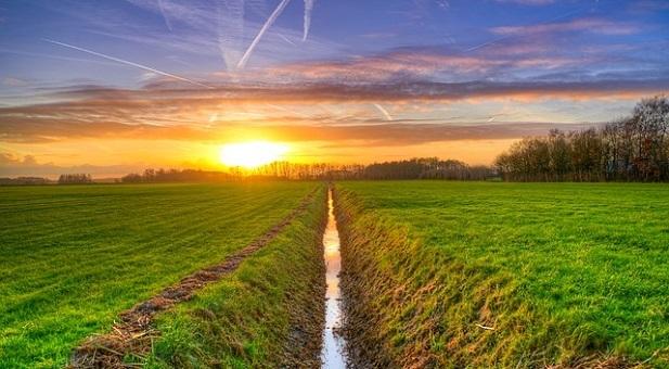 agricoltura-perso-il-28-della-superficie-coltivabile