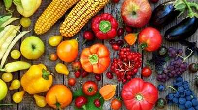Alimenti cibo nutrizione