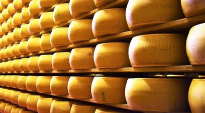 Parmigiano conservazione cibo