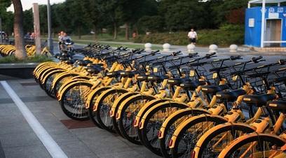 Mobility sharing bike