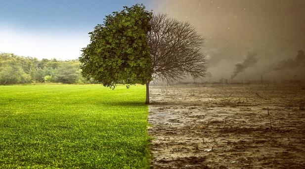 gli-smartphone-minacciano-l-ambiente