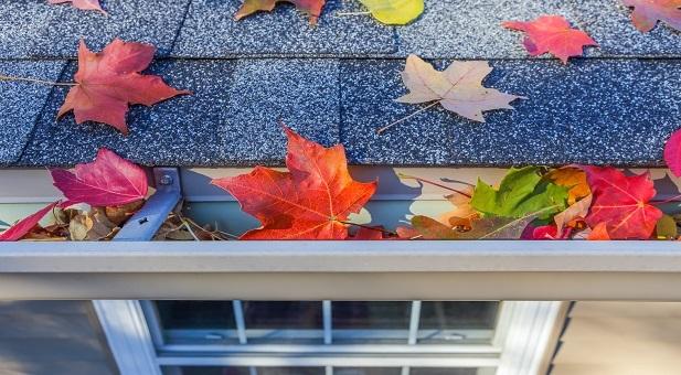 i-vicini-se-sono-buoni-aiutano-a-vivere-meglio