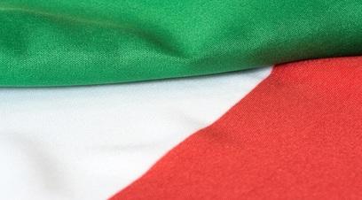 Italia tra rivoluzione e establishment
