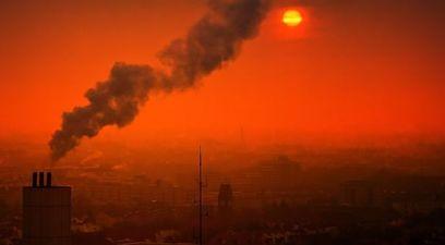 Inquinamento .smog .capacit..cognitive .pnas .oms