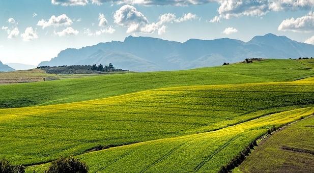 ogni-secondo-l-italia-perde-due-metri-quadri-di-suolo