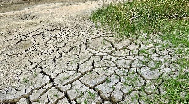 affrontare-gli-impatti-del-cambiamento-climatico