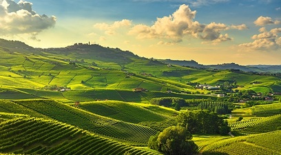Agricoltura in linea con il green deal