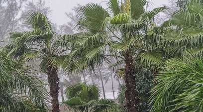 Vietnam monsone