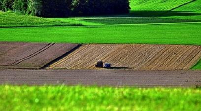 Perdita di biodiversit%c3%a0  %c3%a8 urgente una riforma del sistema alimentare